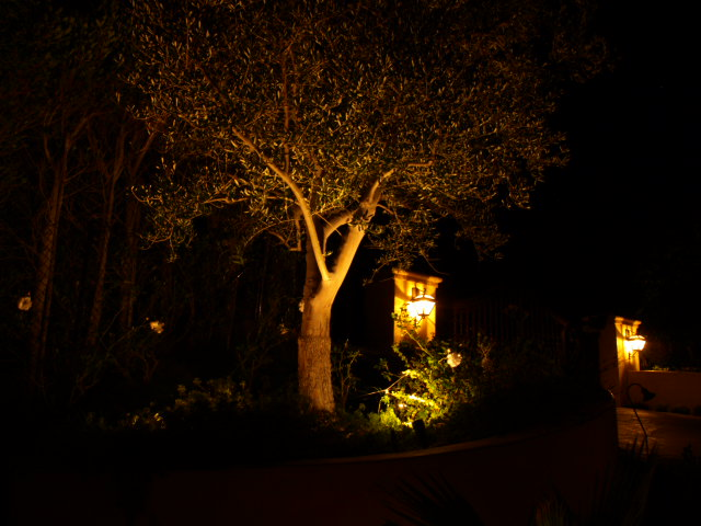 Outdoor Lighting Newbury Park Landscape Lighting